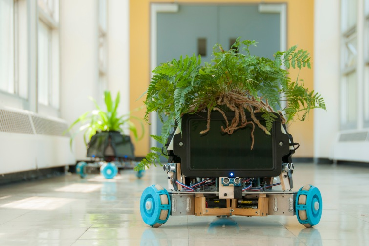 The IThe IndaPlant Project: An Act Of Trans-Species Giving, Elizabeth Demaray and Dr. Qingze Zou, 2014, utilizes machine learning and robotics to facilitate the free movement and metabolic function of ordinary houseplants.ndaPlant Project: An Act Of Trans-Species Giving—originally beginning as a collaboration between the artist Elizabeth Demaray and the engineer Dr. Qingze Zou—is designed to facilitate the free movement and metabolic function of ordinary houseplants.