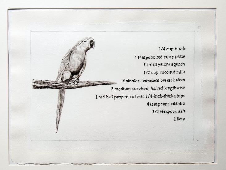 Spix's macaw (Cyanopsitta spixii)